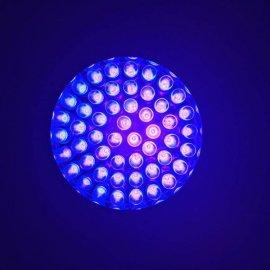 Linterna Ultravioleta 51 Leds